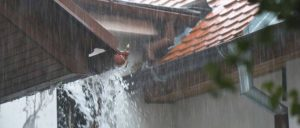 stop gutter flooding in st george