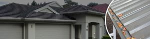 roof gutter leaf guard in pitt town